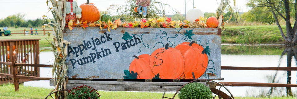 Applejack Pumpkin Patch is The Place For Your Off Season Events